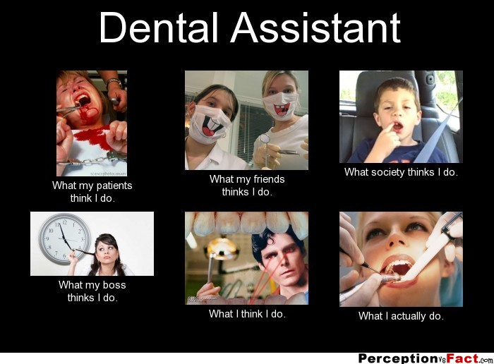 Dental Assistant social foundation of law