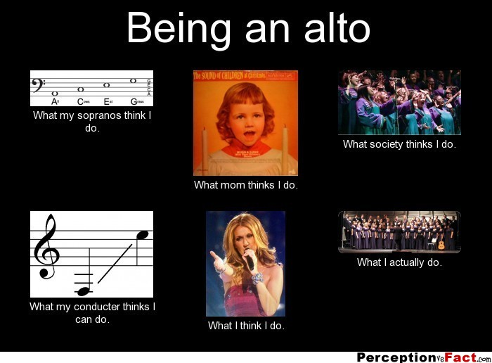 Being An Alto What People Think I Do What I Really