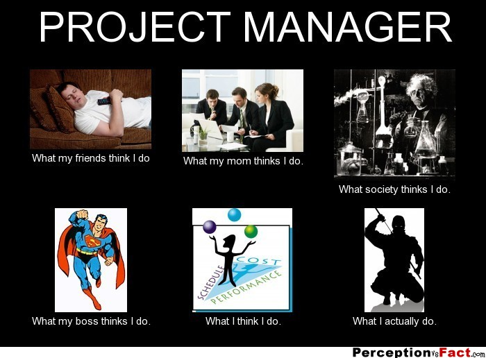 Project manager what people think i do what i really for Do my project