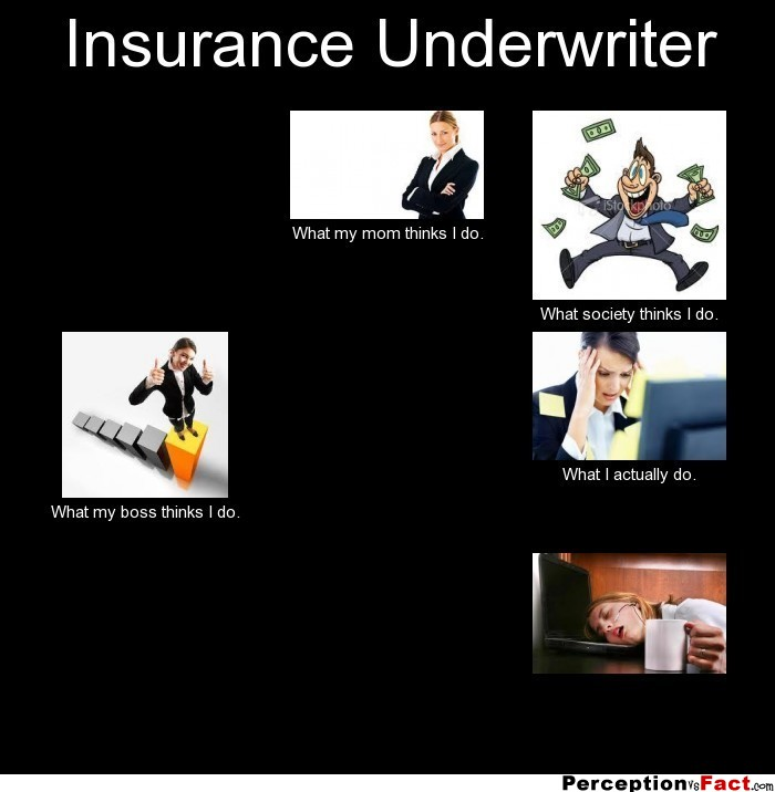 Insurance Underwriter... - What people think I do, what I ...