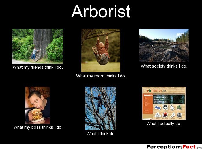 Arborist... - What people think I do, what I really do ...