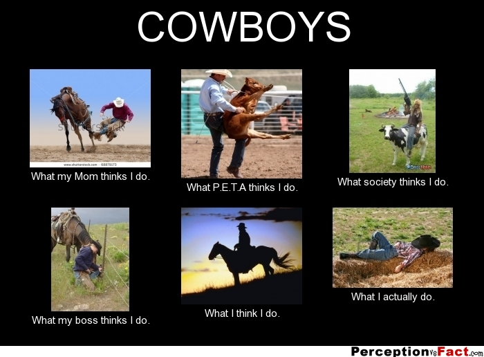 Cowboys What People Think I Do What I Really Do