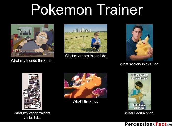 Pokemon Trainer What People Think I Do What I Really Do Perception Vs Fact