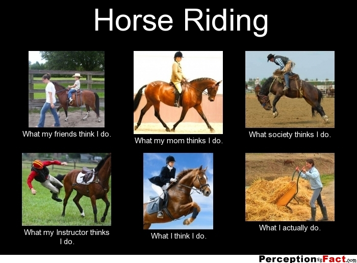 Horse Riding Quotes And Quotes. QuotesGram