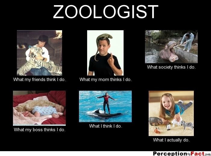 ZOOLOGIST... - What people think I do, what I really do ...
