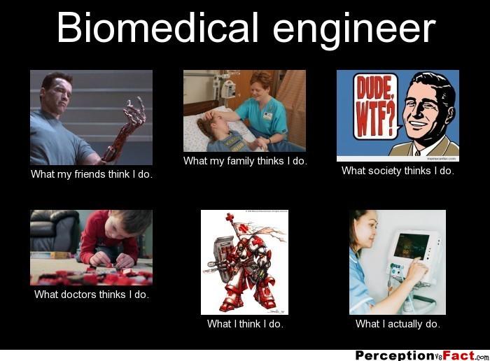 Biomedical Engineering best 10