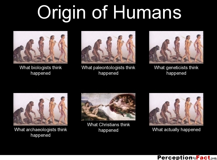 [Image: frabz-Origin-of-Humans-What-biologists-t...8bba56.jpg]