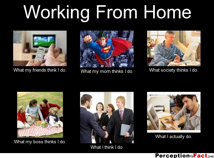 Funny Memes About Work Friends : Working from home what people think i do
