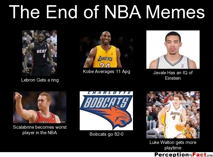 The End of NBA Memes... - What people think I do, what I really do - Perception Vs Fact