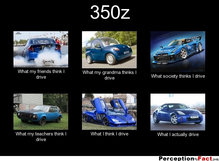 350z What People Think I Do What I Really Do
