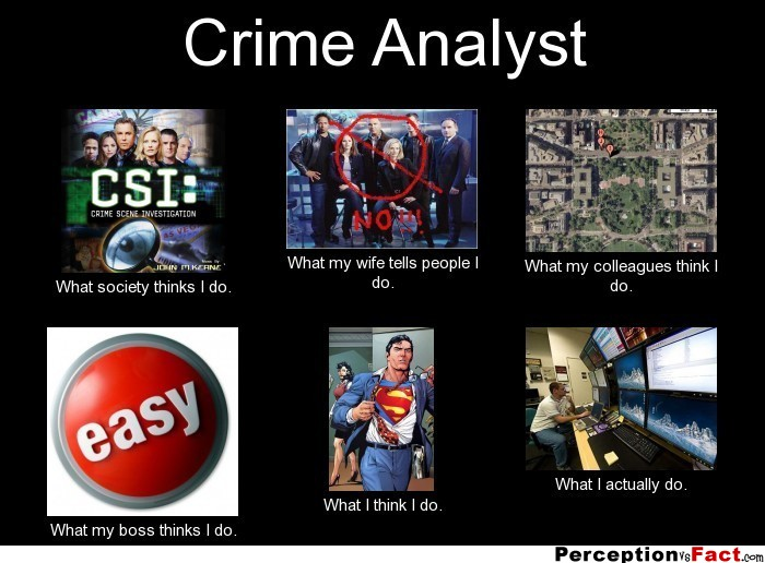 Crime Analyst What People Think I Do What I Really
