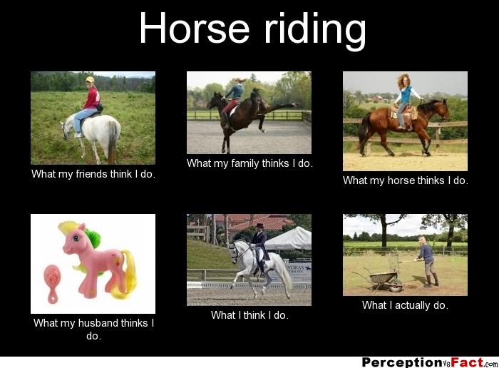frabz Horse riding What my friends think I do What my family thinks I a8b79f horse riding what people think i do, what i really do,What My Parents Think I Do Meme Maker
